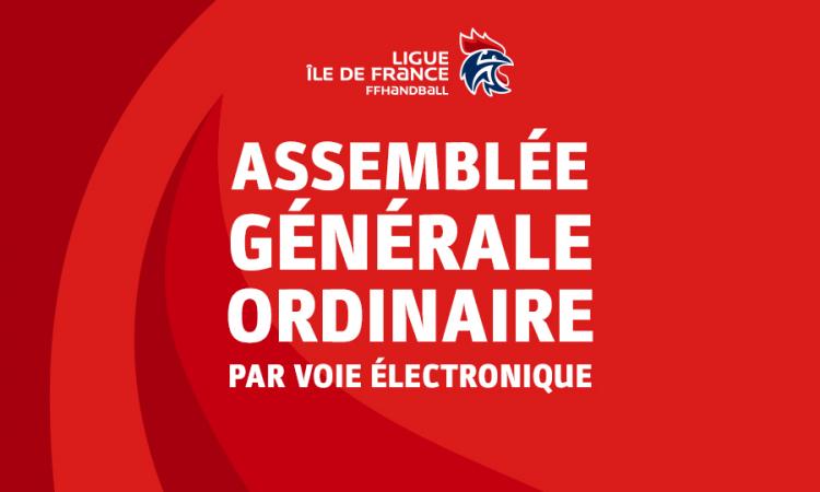 Assemblée générale ordinaire – par voie électronique