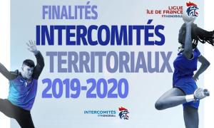 Finalités des intercomités territoriaux 2019-2020